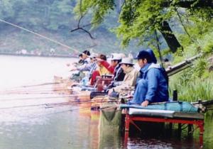 ヘラブナ釣り師であふれるみどり湖