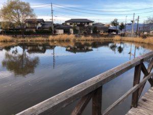 橋から見た池