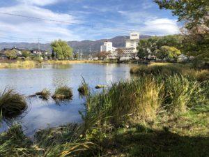 えびの子水苑の池