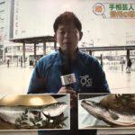 """長野県の""""年取り魚""""が地域でブリとサケに分かれている理由"""