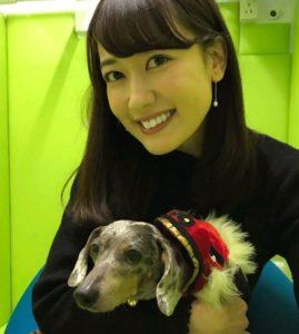 犬を抱く望月麗奈アナウンサー