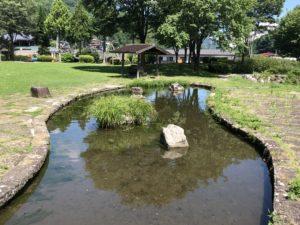 公園内にある水場