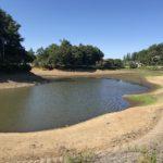 【悲報】瀕死の小坂田池、ほぼ魚全滅&釣り場として終了か・・・